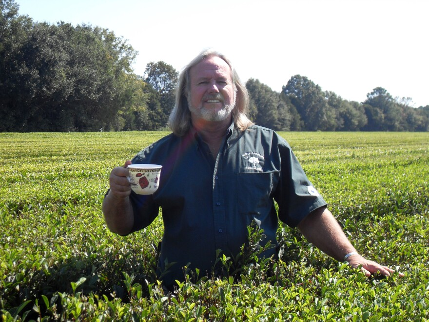 """William Barclay Hall is a third-generation tea tester. """"What could be better than a life centered around tea?"""" he says."""