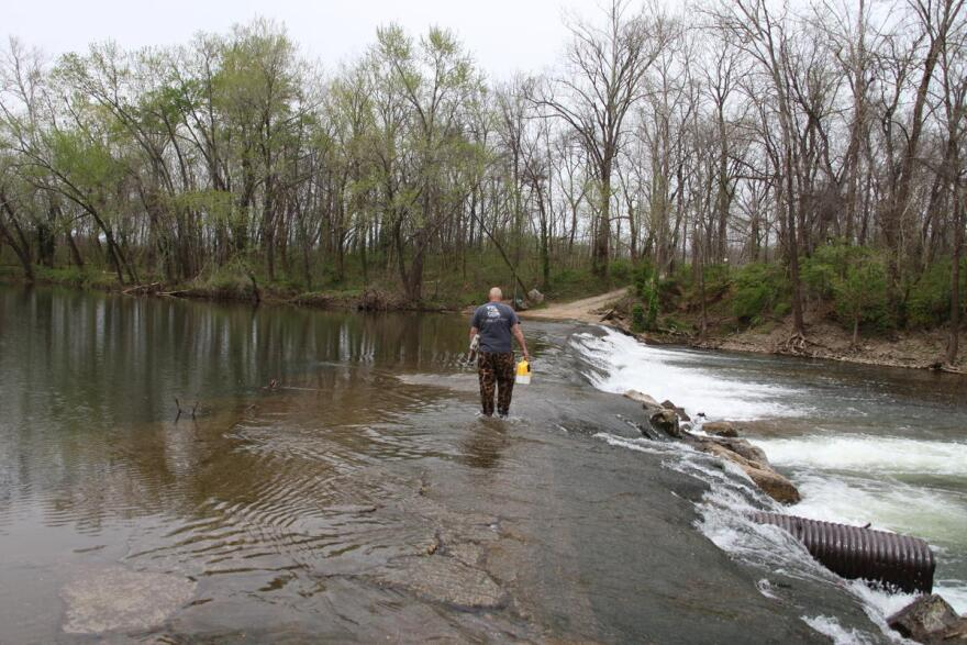 """A fisherman walks across a """"low-water crossing"""" on the Big River which researchers say is an ideal location to remove contaminated sediment."""
