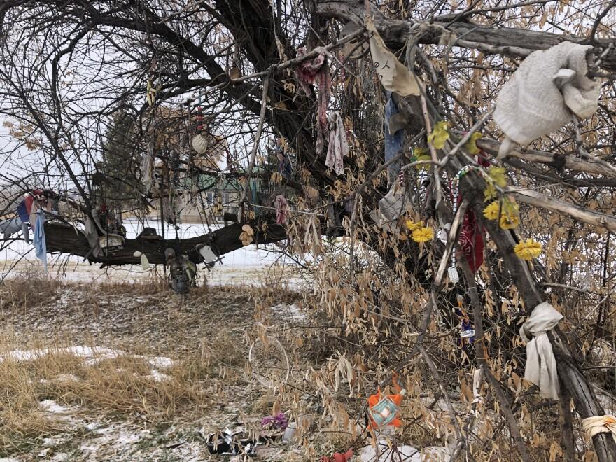 Photo of prayer tree.