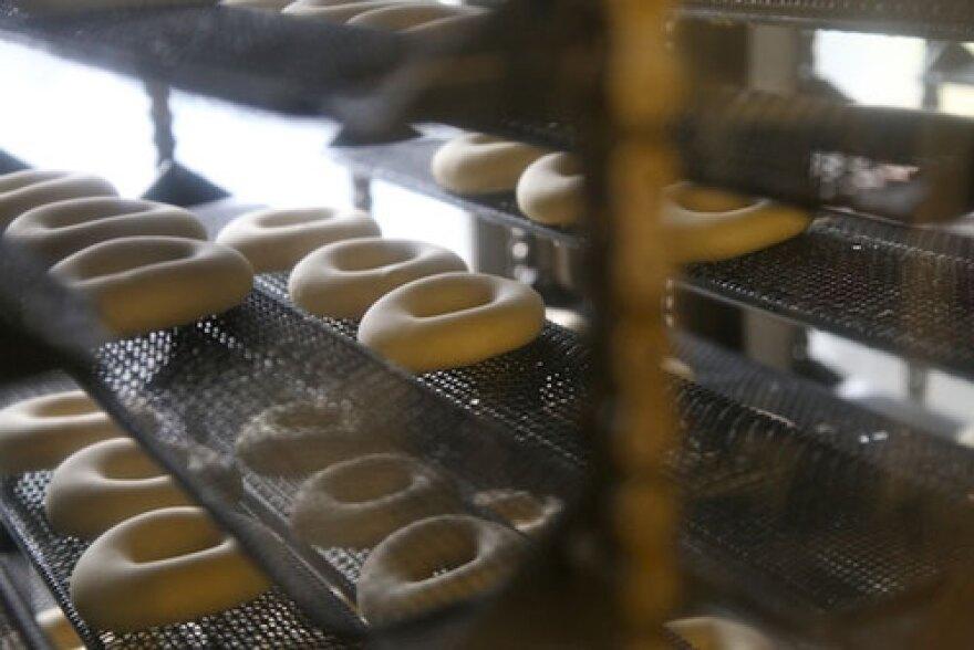 DonutDough500.jpg