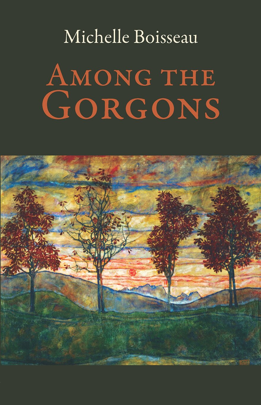 michelle_boisseau_among_the_gorgons_book_cover.jpg