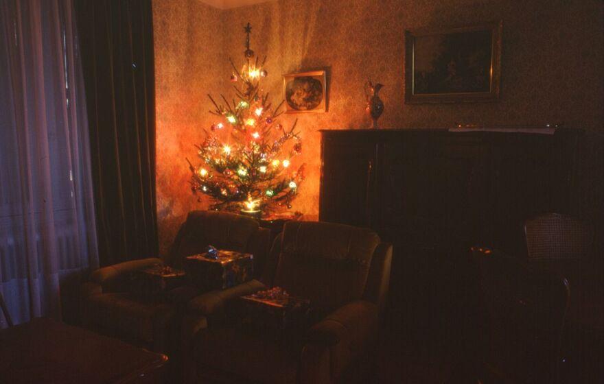 Christmas_Tree_indoors.jpg