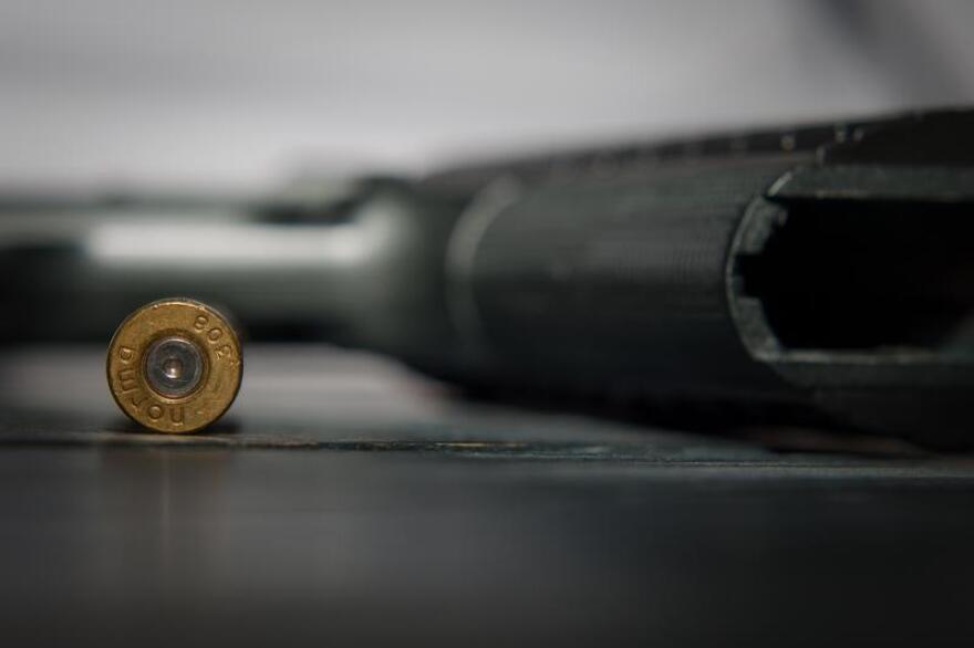 07012019-gun-ammunition-Pixabay_0.jpg