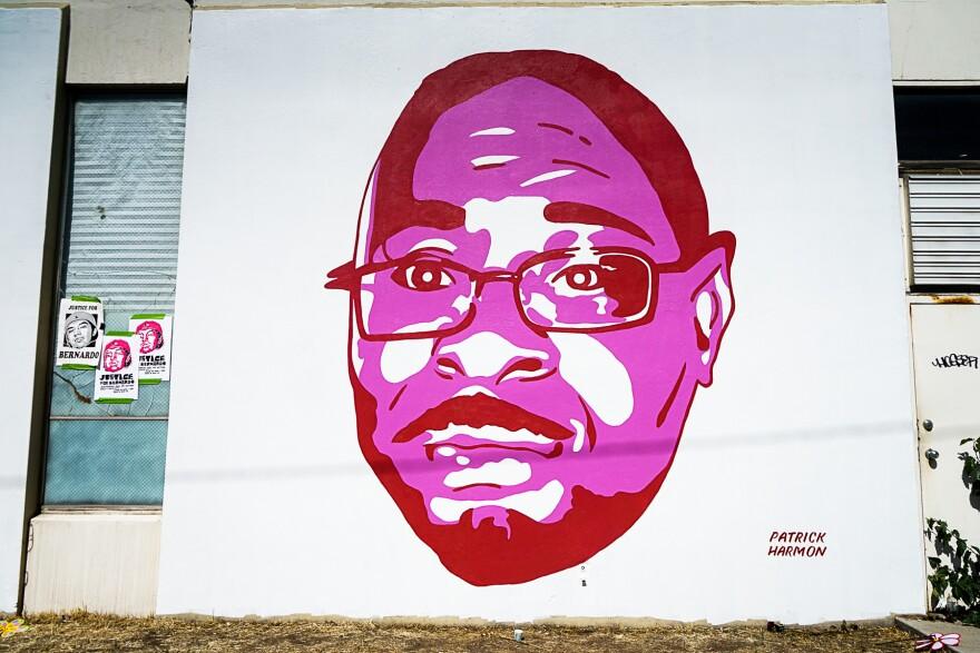 Photo of Patrick Harmon portrait.