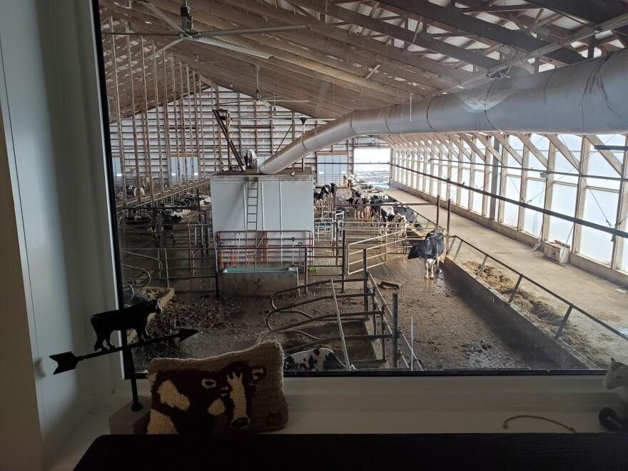 new_day_dairy_three.jpg