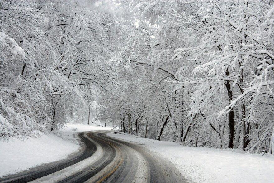 winter-581101_1920.jpg
