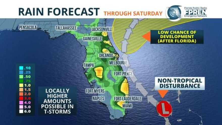 forecasted rainfall for florida