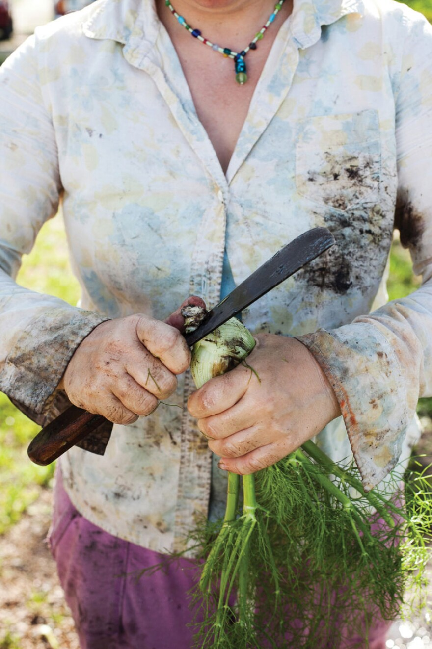 """Terra Hall of Rhizosphere Farm in Missouri Valley, Iowa slicing fennel root. The farm is """"known for providing impeccable vegetables packaged so beautifully it feels like Christmas every time a box is opened,"""" Miller writes."""