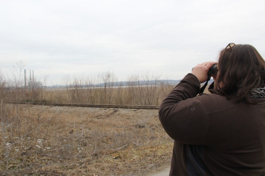 Labadie resident and environmental activist Patricia Schuba looks at the Labadie Energy Center through binoculars.