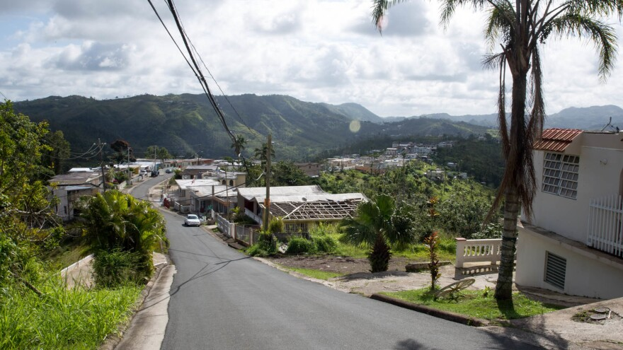 Six months after Hurricane Maria, electric lines still hang haphazardly along the streets of the small town of Botijas, about an hour inland from San Juan. Down the road, Dalma Cartagena teaches elementary school children how to compost, plant and harvest crops.