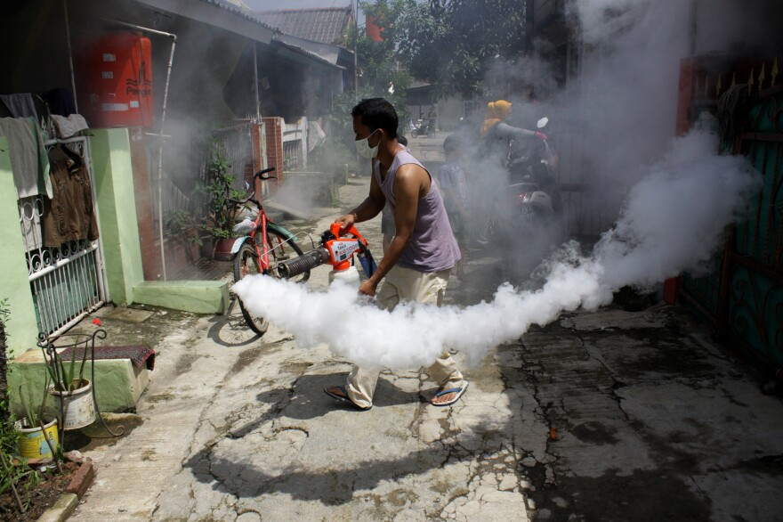 Indonesians independently carry out fumigation in their neighborhood to eradicate the larvae of mosquitoes that cause dengue fever. A new vaccine to prevent dengue may be on the horizon.