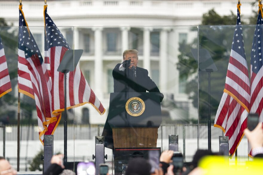 President Donald Trump speaks during a rally protesting the electoral college certification of Joe Biden in Washington.  (Evan Vucci, File/AP Photo)