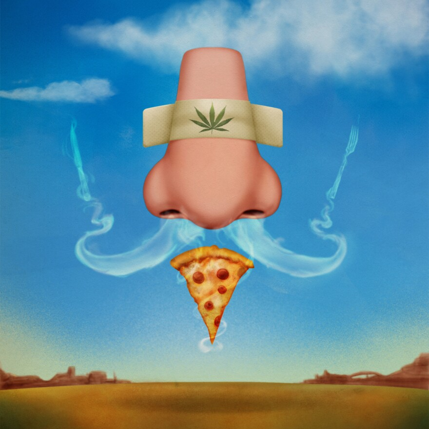 <strong>We Didn't Make This Up:</strong> The scientists who performed the study on how cannabis triggers the munchies through the sense of smell commissioned an artist to put this illustration together.