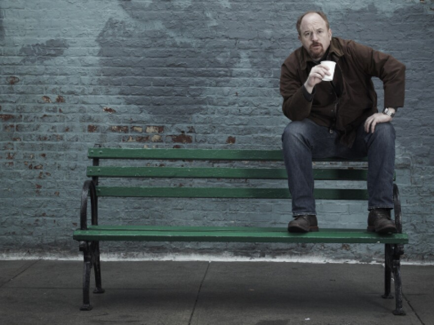 Louis C.K., born Louis Szekely, is a writer, actor, producer, director and star of the FX series <em>Louie</em>.