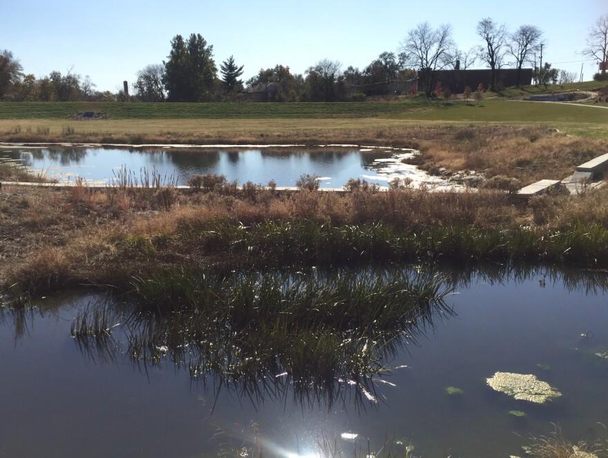 stormwater_pond.jpg