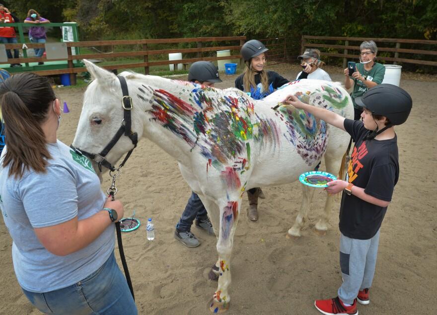 102320_cm_HorsePaint_Ledephoto