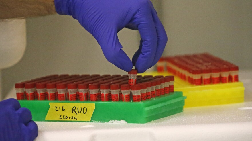 A lab technician for the company Co-Diagnostics prepares components for a coronavirus test. The company has come under scrutiny regarding its tests' accuracy and stock sales by leadership at the company.