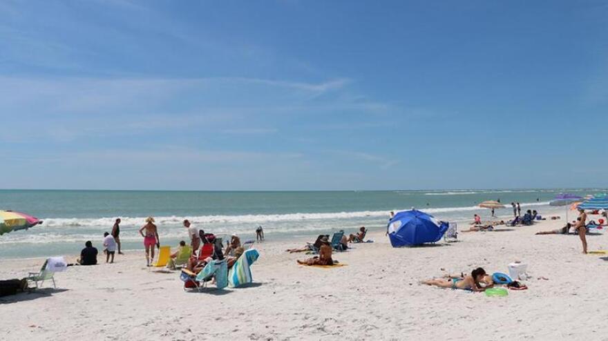 Beachgoers at the ocean