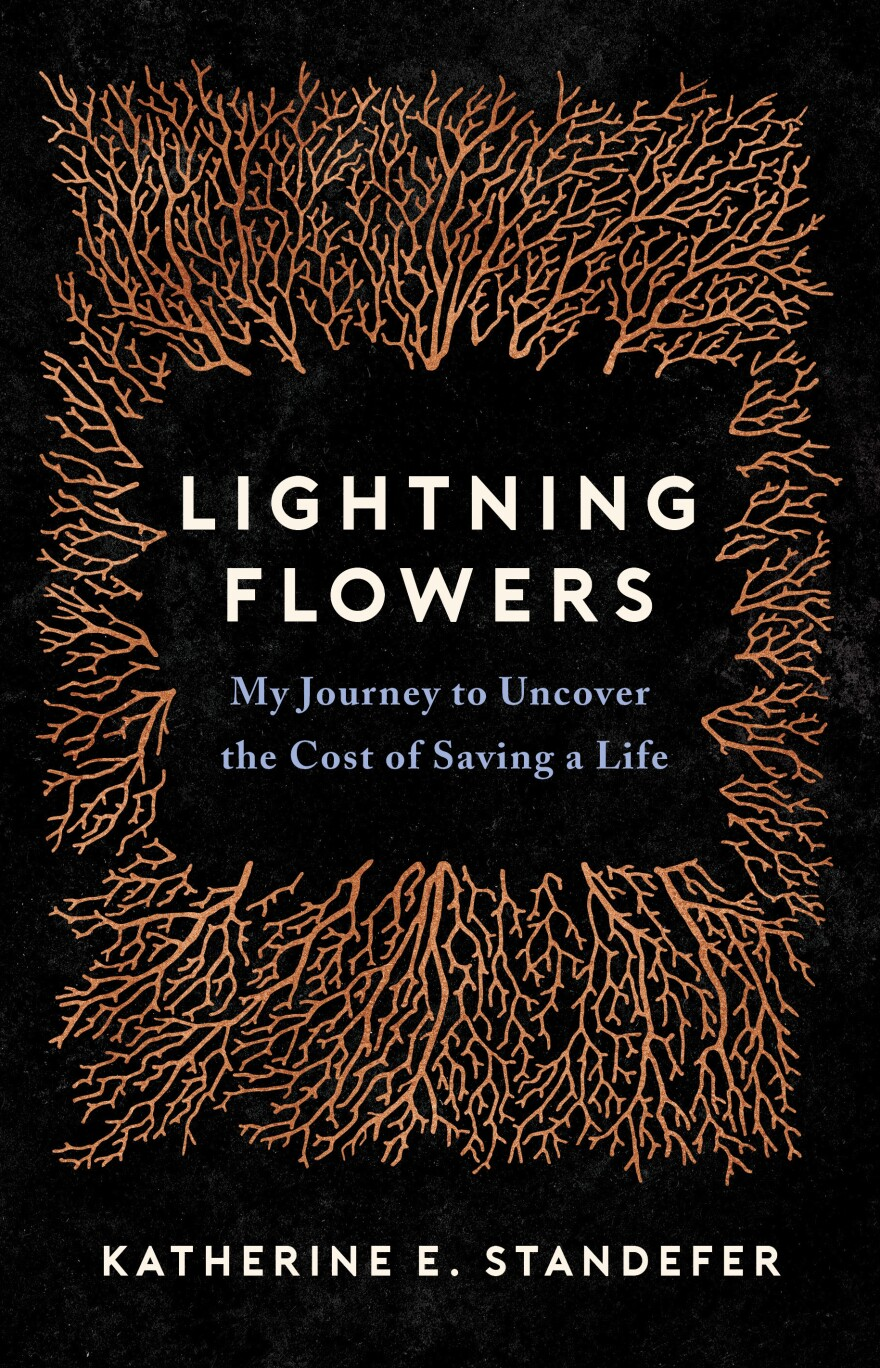 Lightning Flowers, by Katherine Standefer