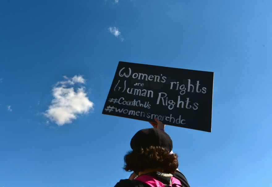 A demonstrator holds a sign saying Women's Rights Are Human Rights.