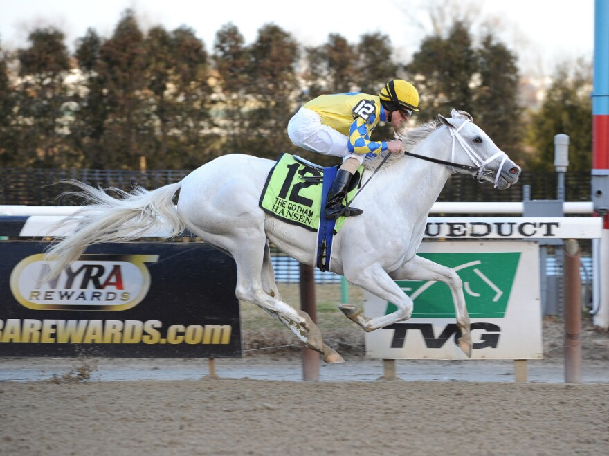 Hansen, ridden by Ramon A. Dominguez, races to the finish to win the March 3 Gotham Stakes at Aqueduct in New York.