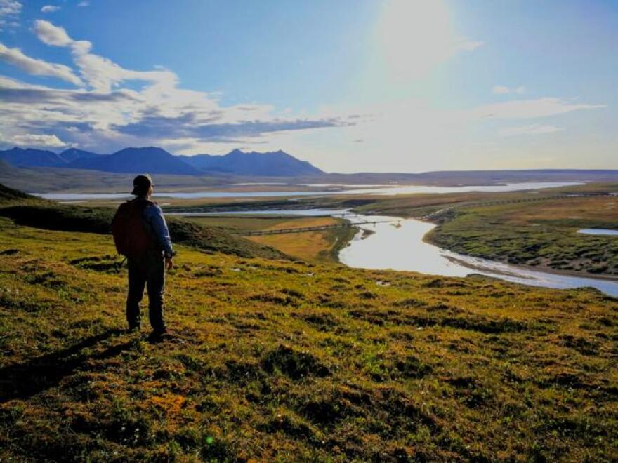 LASA teacher David Walker looks out over the North Slope in the Arctic National Wildlife Refuge.