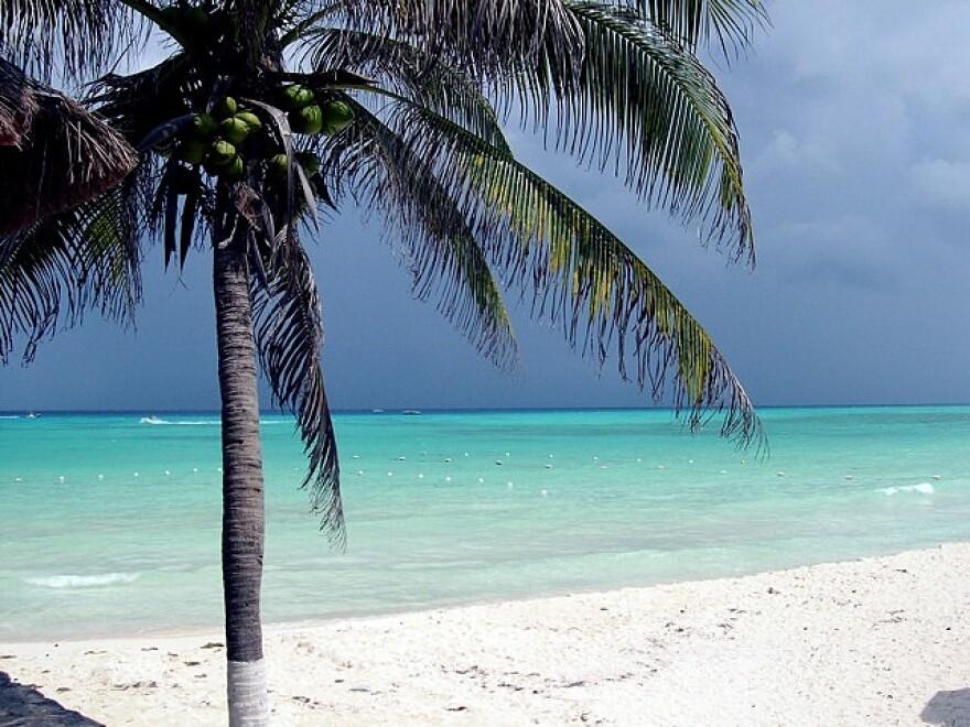 beach_Caribbean Free Photo_used 3-7_0.JPG