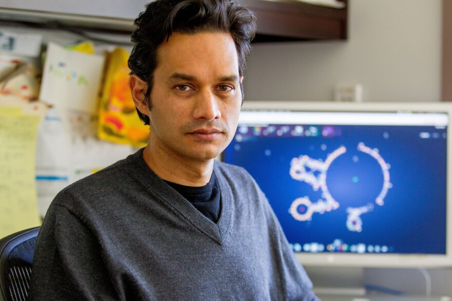 Rhiju Das, a computational biochemist at the Stanford University School of Medicine, helped create the EteRNA online game. It challenges people to design new RNA molecules.