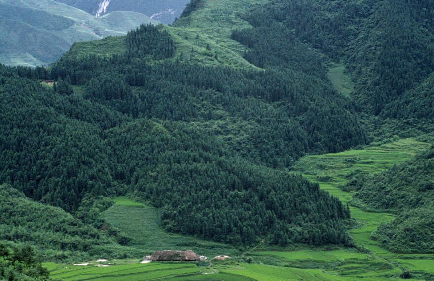 A landscape undergoing a reforestation project is seen in Gongxian County in Sichuan, China.