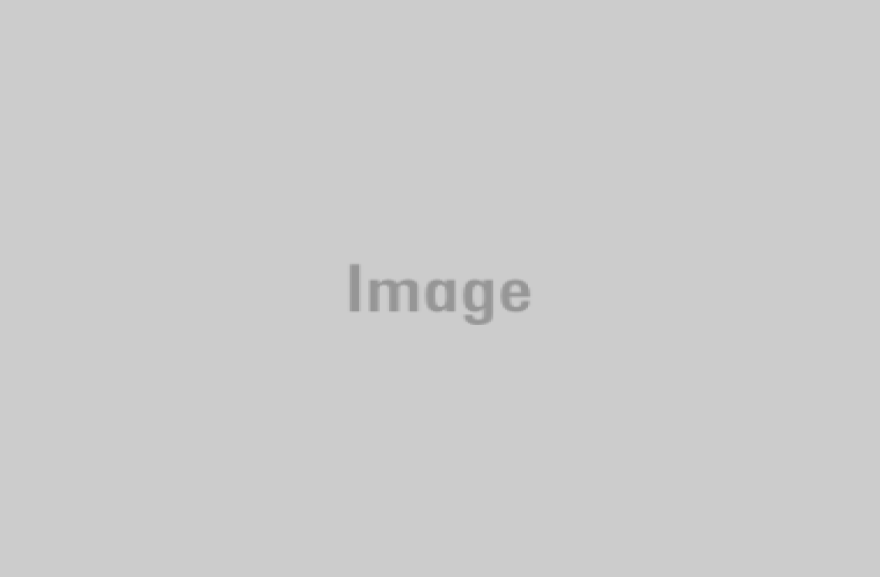 A curious Brown Swiss dairy cow peers over Casey DeHaan's rotary parlour outside Ault, Colo. (Luke Runyon/Harvest Public Media)
