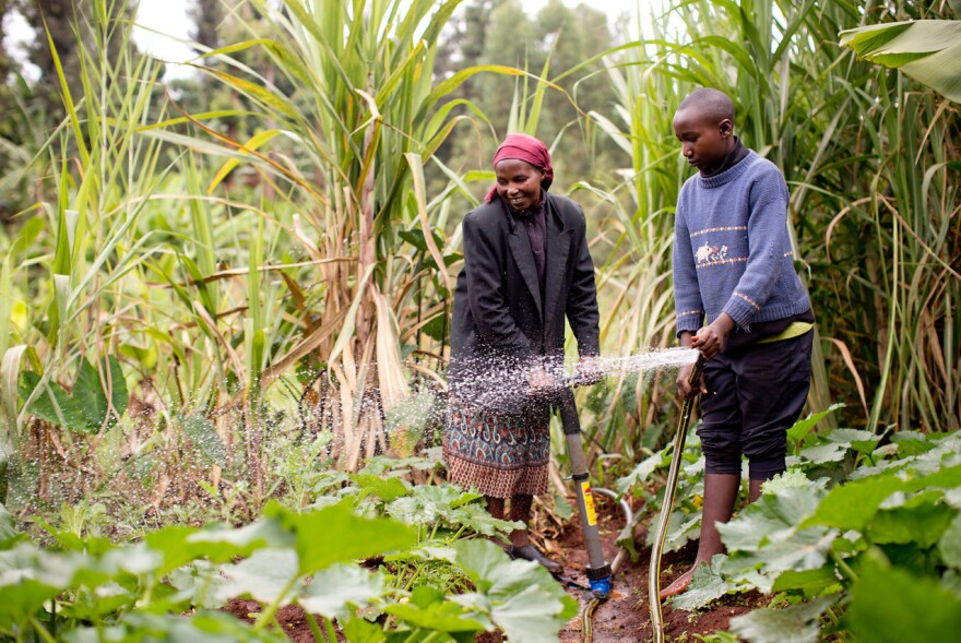 Creative Financing to Make Small-Scale Farming Technologies Affordable for the Rural Poor Small-scale farming is the principal source of livelihood for many in Kenya. Agriculture provides 71 percent of employment and accounts for over 25 percent of Kenya's GDP.