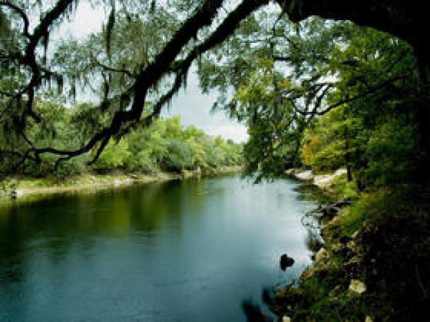 suwannee_river_state_parks.jpg