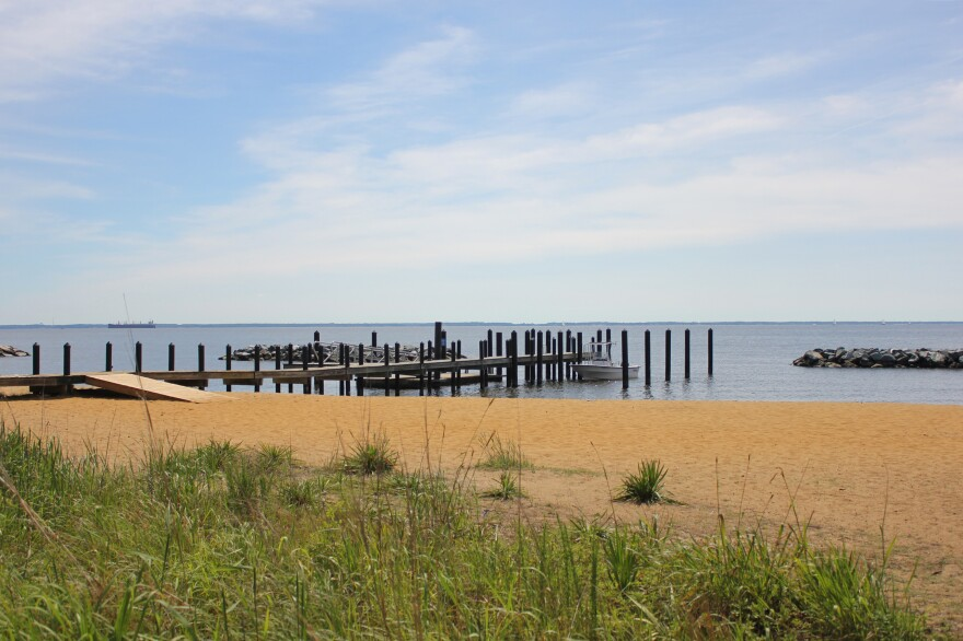 """The beach at the Chesapeake Bay Foundation headquarters in Annapolis, Md. """"You give nature half a chance and she will produce every single time,"""" says Will Baker, the nonprofit's president."""