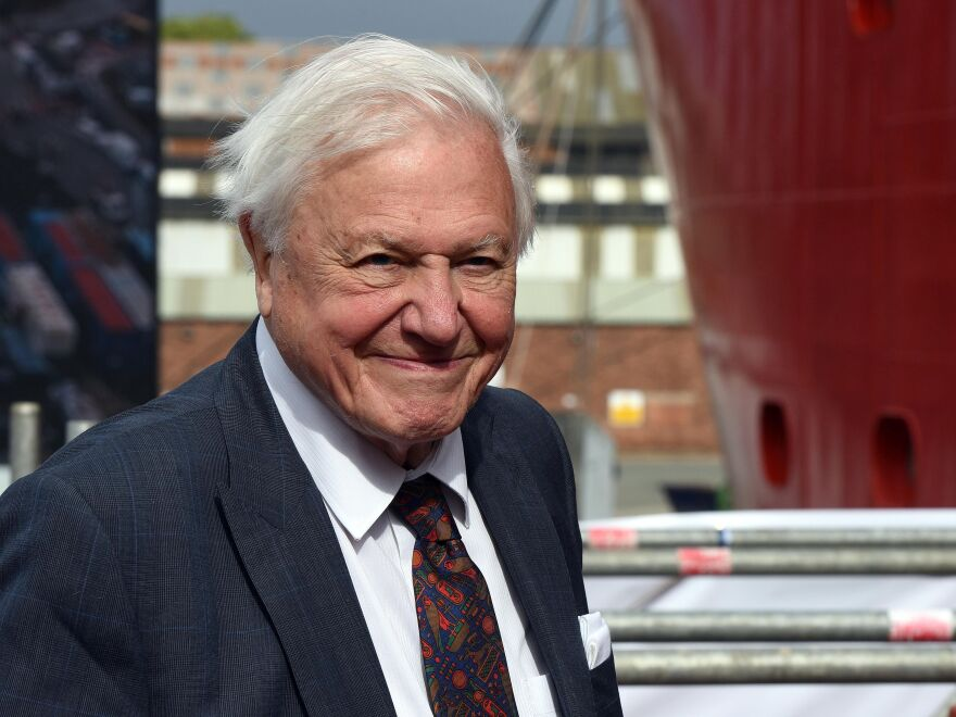 Sir David Attenborough, shown here during a ceremony last September, broke the world record on Thursday for the fastest time to reach one million followers on Instagram.