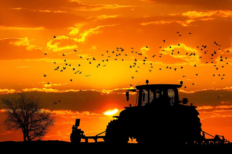 Farm Tractor sunset.jpg