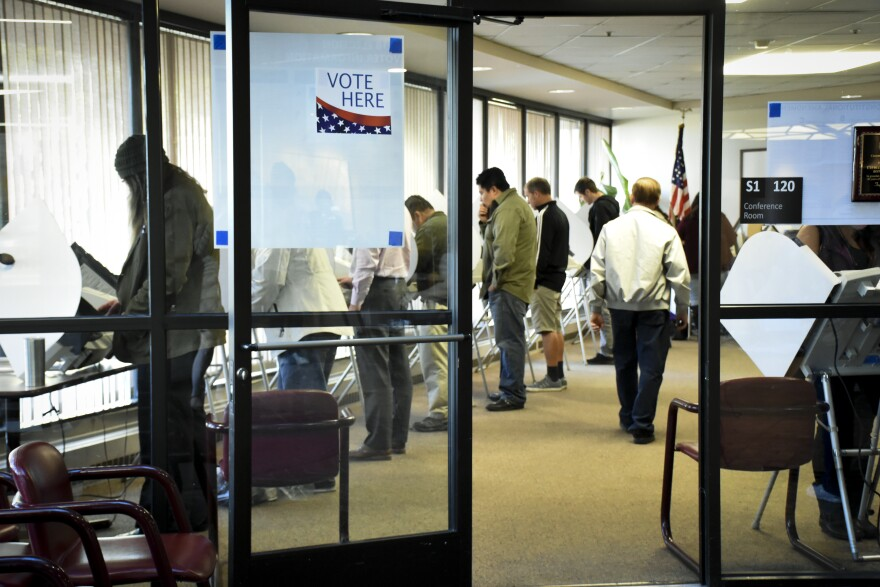 Photo of people voting at electronic voting booths.