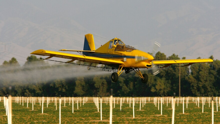 A crop duster airplane sprays a powerful organophosphate pesticide on cotton and potato fields near Bakersfield, Calif. Researchers in three studies looked at women exposed to organophosphates during pregnancy and then followed their children to see how the pesticides affect  children's health.