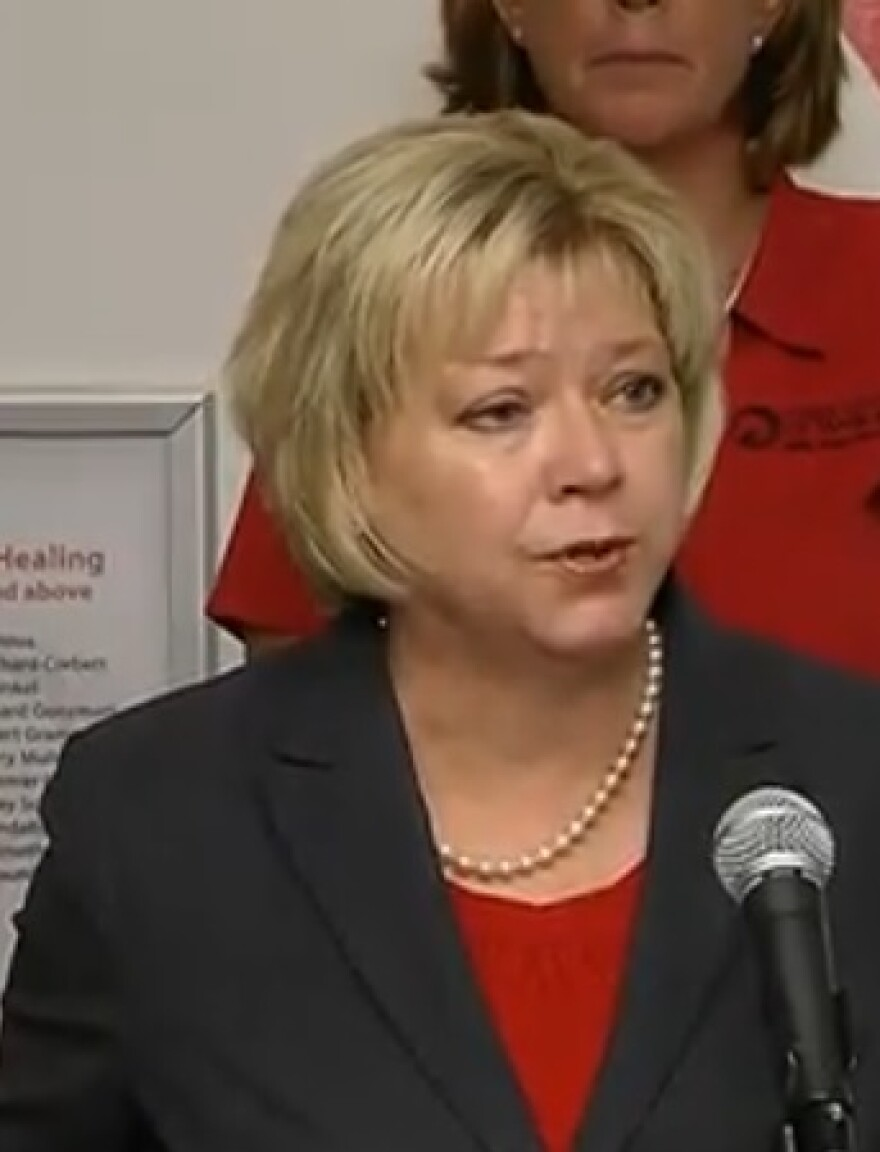 Rep. Janet Adkins (R-Fernandina Beach) speaking during a recent press conference on Florida's untested rape kits.