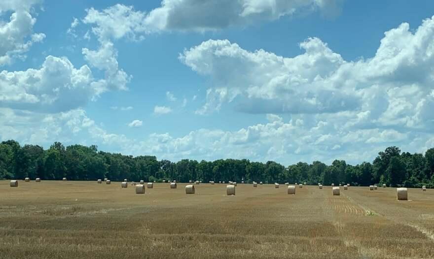 Farm-Field_TecumsehLandTrust.jpg