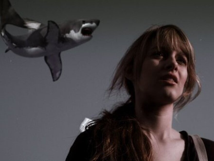Aubrey Peeples as Fin's daughter in <em>Sharknado</em>. Which really happened.