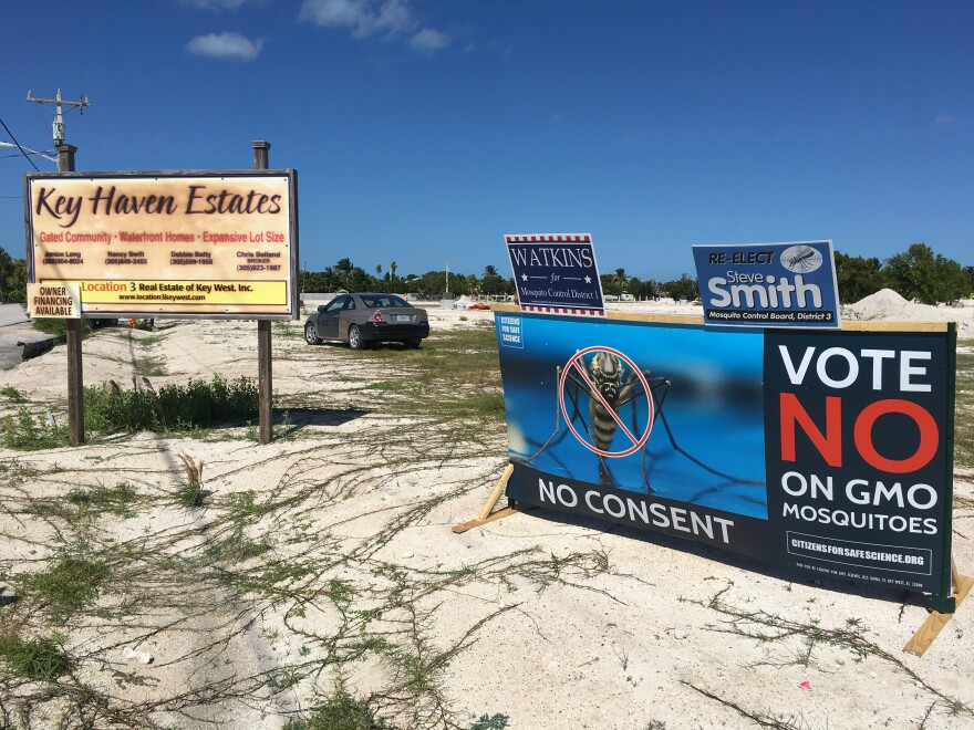 For months people in the Keys have been arguing about a proposed trial of GMO mosquitoes in Key Haven, a neighborhood about five miles from Key West.