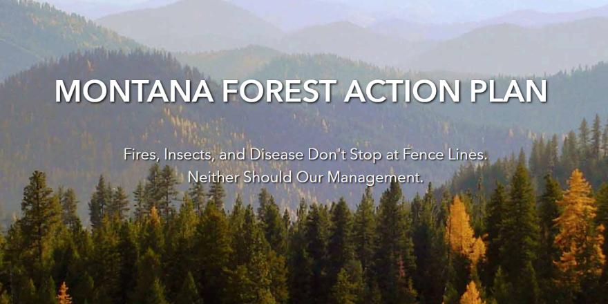 Screen capture from the Montana Forest Action Plan website, 11-18-20, https://www.montanaforestactionplan.org/