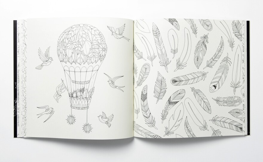 Artist Goes Outside The Lines With Coloring Books For Grown-Ups WFAE 90.7  - Charlotte's NPR News Source