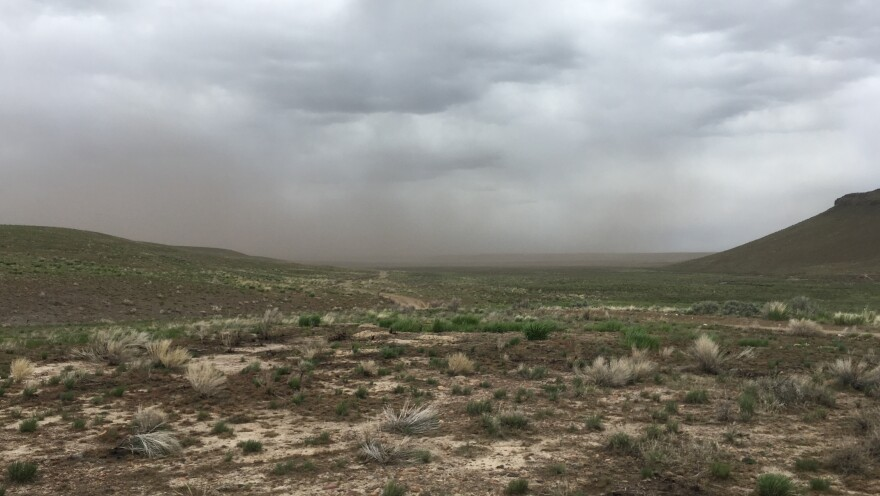 Ash blows off of rangeland that burned in the Martin Fire of 2018 — the largest in Nevada state history.