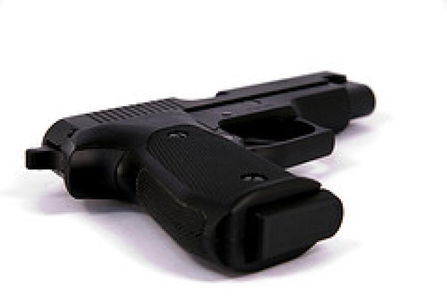 guns___ammo_1_by_kcdstm.jpg