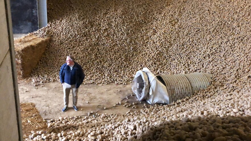Romain Cools, the secretary general of Belgium's potato processing association, stands in a warehouse filled with potatoes. Cools is encouraging people to eat more fries as the price of potatoes has plummeted.