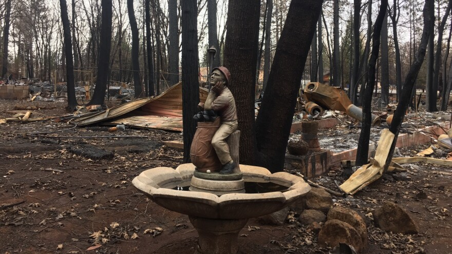There are still burned out cars, school buses, and toxic debris all over Paradise, Calif. Neighborhoods remain unrecognizable to even longtime residents.