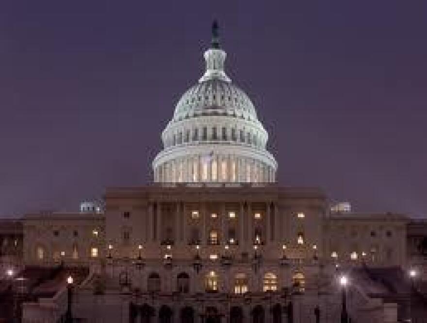 Capitol at night_1_1.jpg