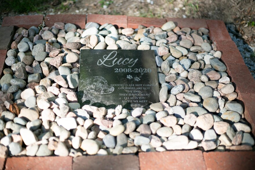 A memorial garden for the dogs will be built around the grave of Lucy, a dog who inspired the co-founders of the shelter.