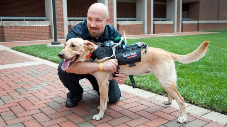 David Roberts says the Cyber-Enhanced Working Dog harness will allow humans to monitor dogs' physical and emotional states remotely, such as in search and rescue operations.